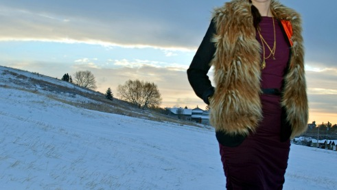 Wooly Vest